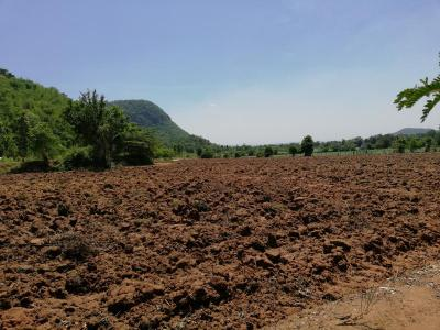 ที่ดิน 1500000 กาญจนบุรี เมืองกาญจนบุรี เกาะสำโรง