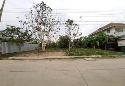 ที่ดิน 3500000 กรุงเทพมหานคร เขตมีนบุรี แสนแสบ