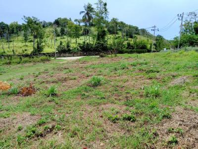 ที่ดิน 79 สุราษฎร์ธานี เกาะสมุย บ่อผุด